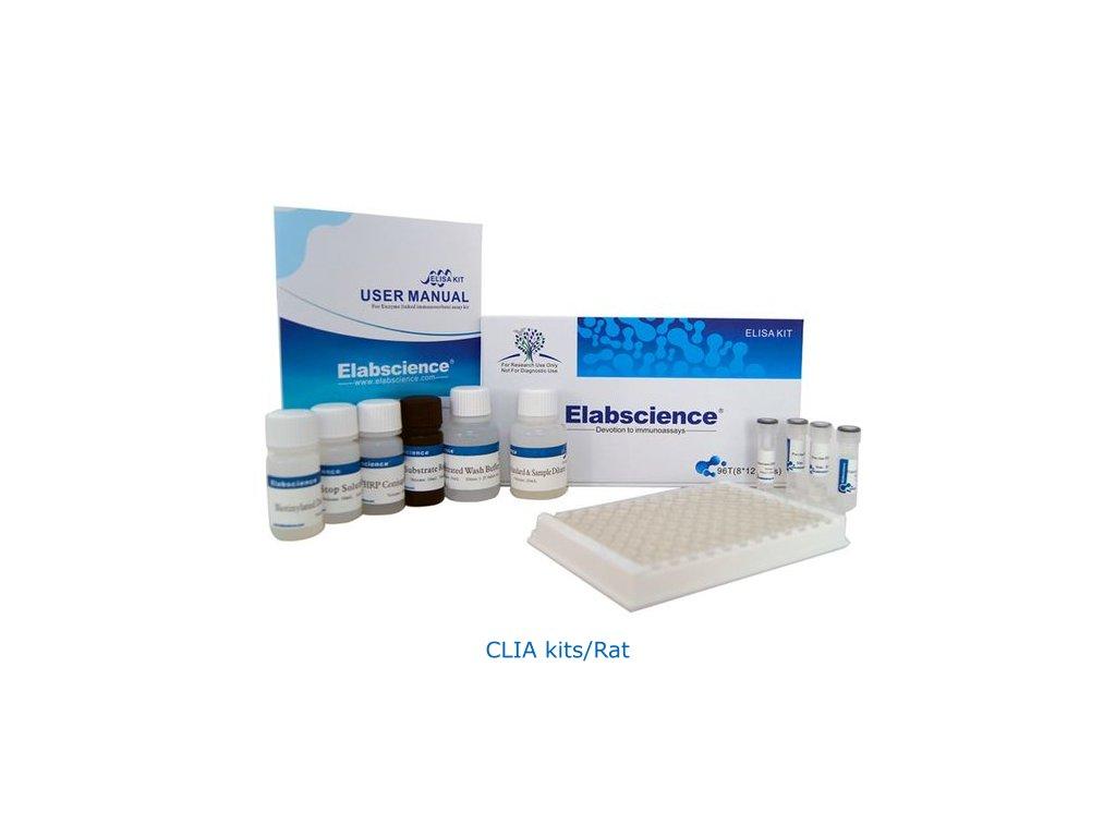 CLIA kits Rat