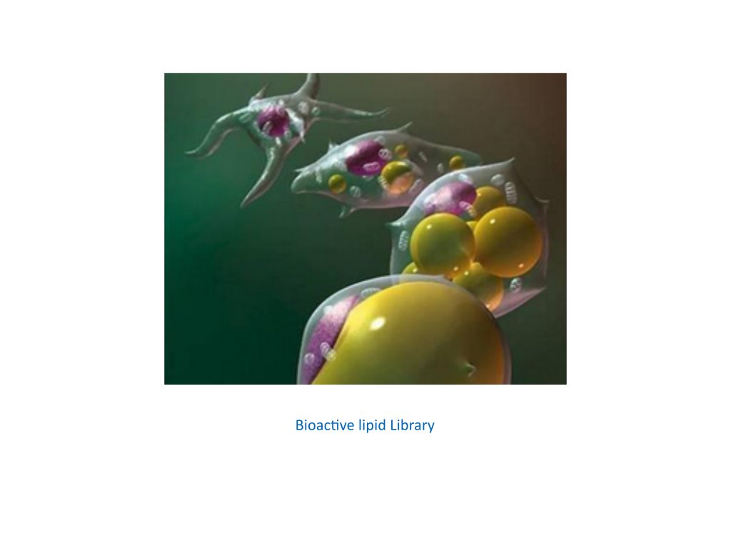 bioactive lipid library