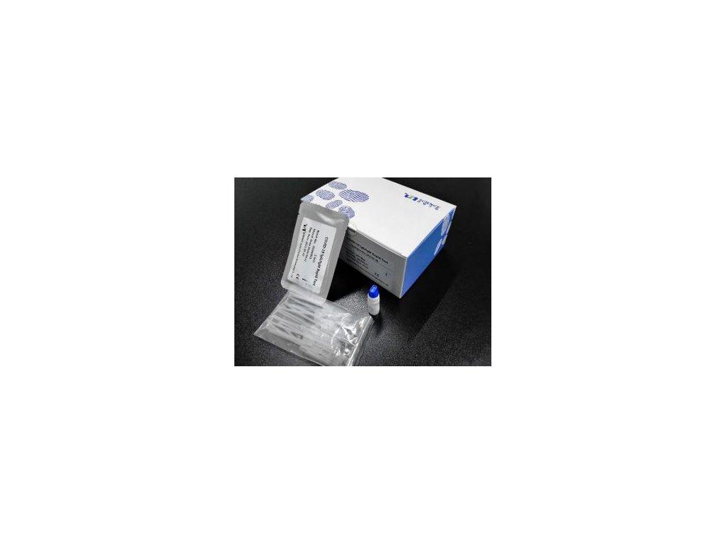 UNCOV 40 rapid test