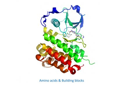 Amino acids & Building blocks