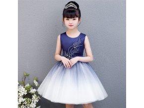 2 Cute Children Celebration Clothing Kids Party Evening Princess Sundress Navy Blue Flower Little Girls Dress Up