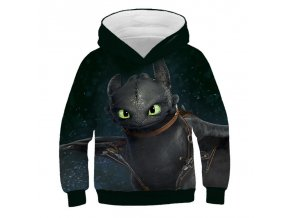 2 Autumn Cartoon How to Train Your Dragon Boys girl Sweatshirts Kids Hoodies 3D Printed Children Long