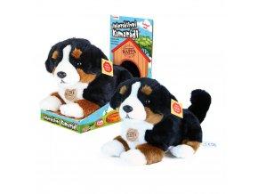 Pes Berry - plyšový interaktivní kamarád