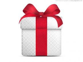 christmas gift icon 53113