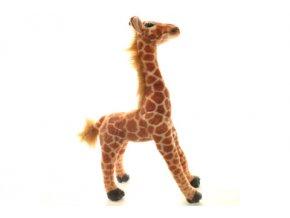 Plyšová Žirafa, 40 cm