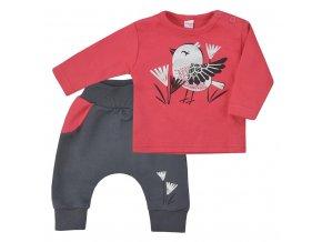 Kojenecké bavlněné tepláčky a tričko Koala Birdy tmavě růžové, vel. 68 (4-6m)
