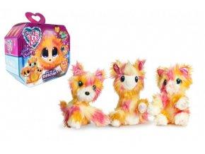 Zvířátko FUR BALLS plyš Touláček Tutti Frutti pejsek/kočka/lama s doplňky v krabici 24x20x10cm