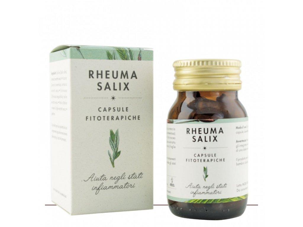Rheuma Salix protizanetliva kapsle Klaster Praglia Italie