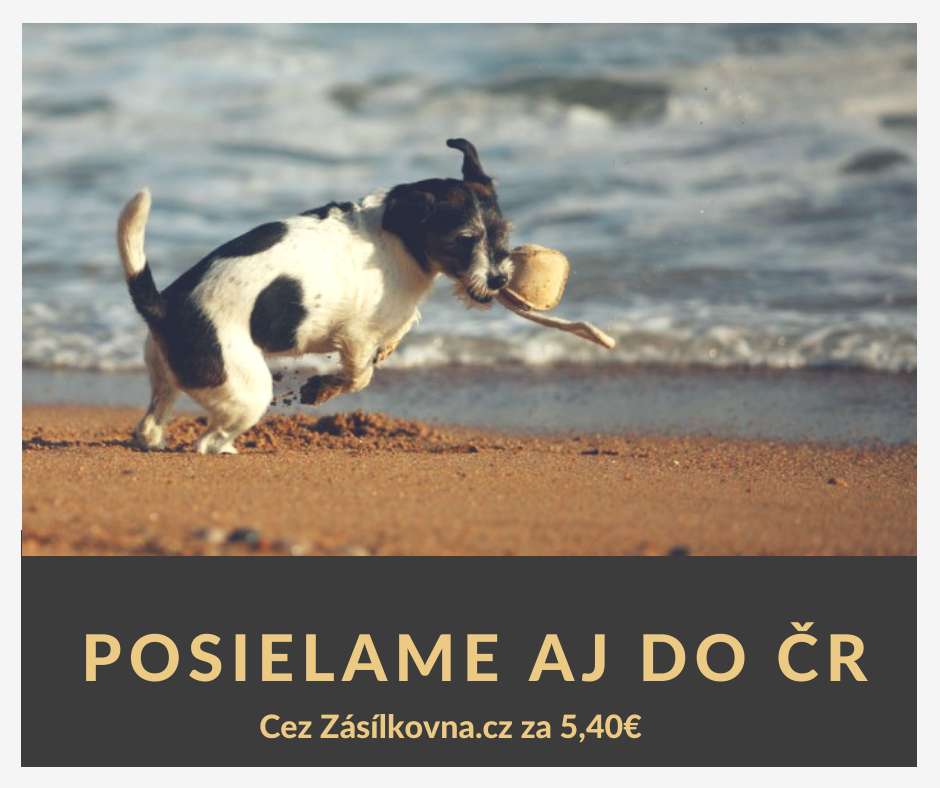 Doprava do ČR