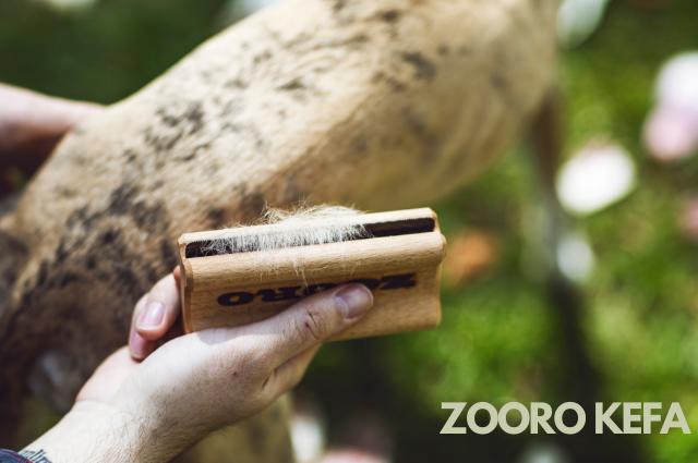 Zooro kefa na srsť
