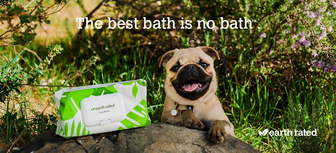 The-best-bath_is_no_bath_Banner