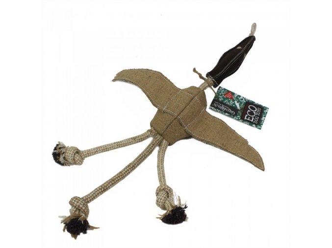 desmond duck 6.16 700x700