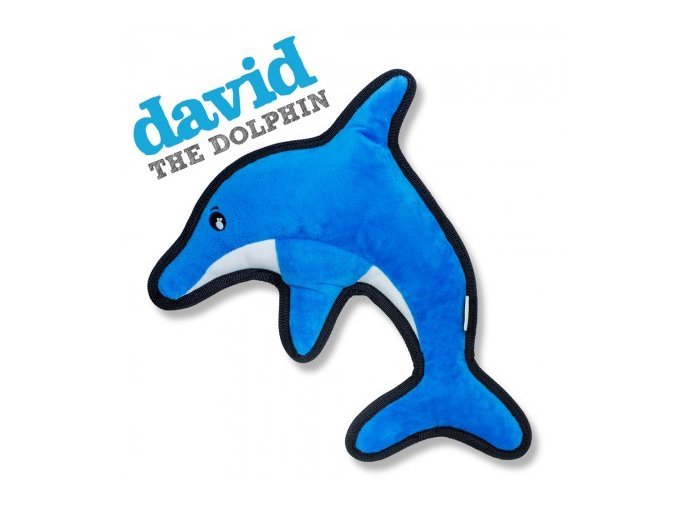 Dolphin w Name 450x450