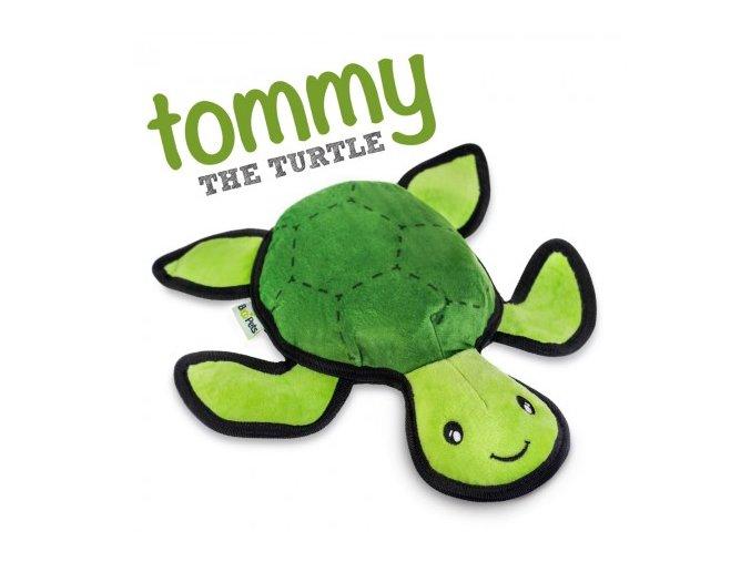 Turtle W Name 450x450