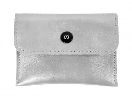 TOLLARY silver leather 1