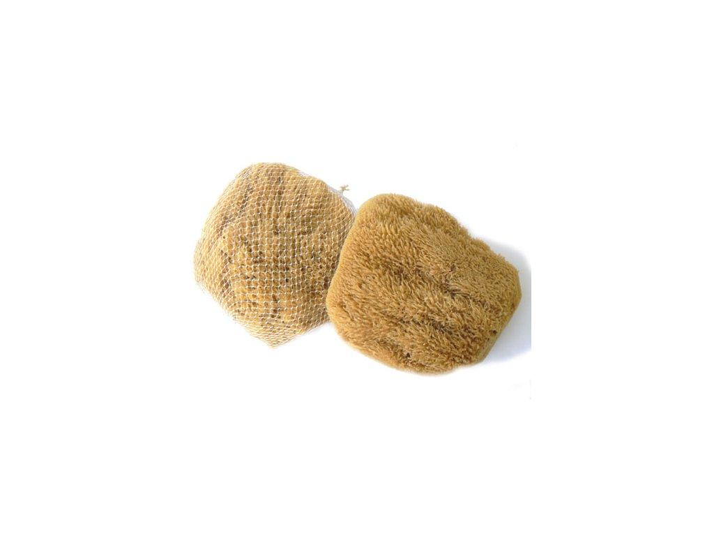 Karibská 17-19 cm