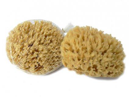 Mořská vlna 9-11 cm