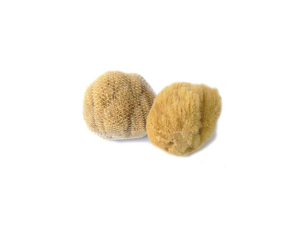 Mořská mycí houba přírodní karibská