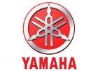 Yamaha speciality