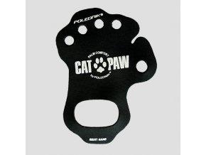 cat paw4