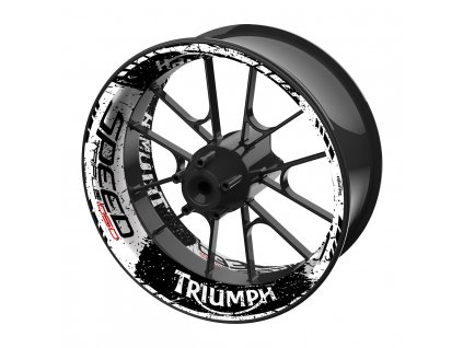 Triumph CP17TH N02C01 3D