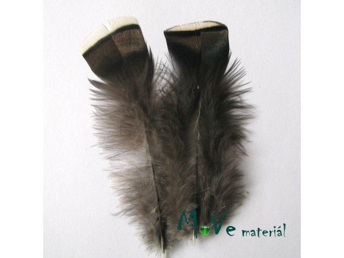 Krocaní peří ocasní cca 10-14cm,2ks přírodní