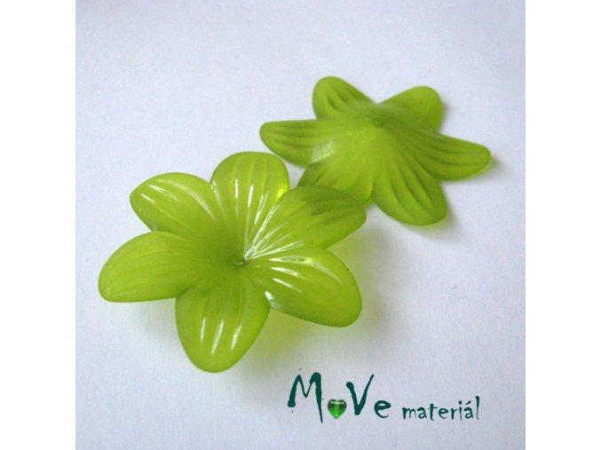 Akrylový květ transp. 42mm, 1ks, zelený