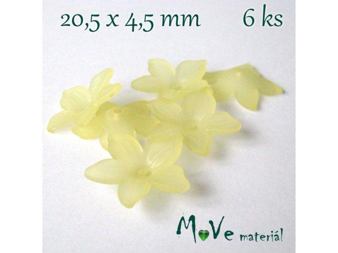 Akrylový květ - transparentní 20,5mm, 6ks, žlutý