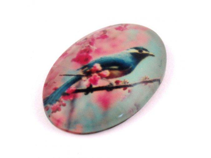 SKLENĚNÝ KABOŠON 30X20MM, ptáček 1