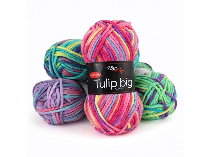 tulip big v kopie
