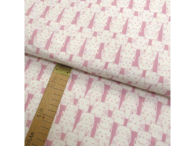 Bavlněné plátno - Krémové kočky na růžové - šíře 150cm/1bm