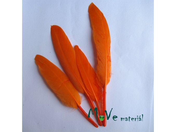 Ozdobné kachní peří délka 120-140mm, 4ks oranžové