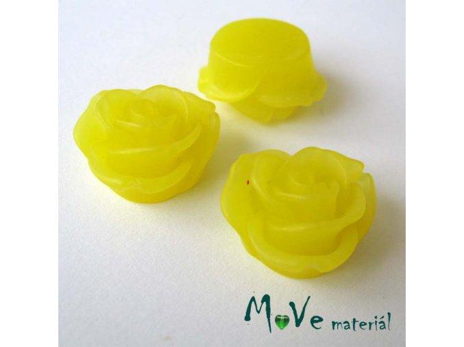 Kabošon květ průsvitný A2 - resin - 2ks, žlutá