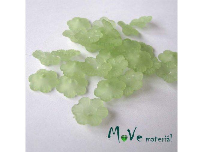 Transparentní akrylové kytičky 12x3mm, 30ks, zelené