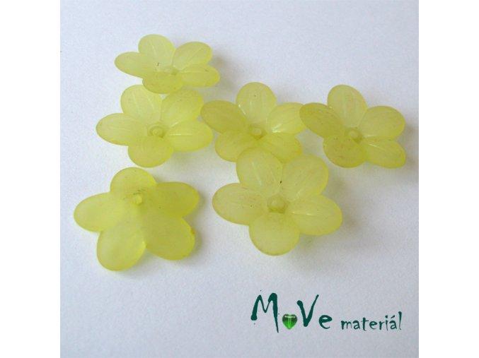 Akrylový transparentní květ 20mm, 6ks, žlutý