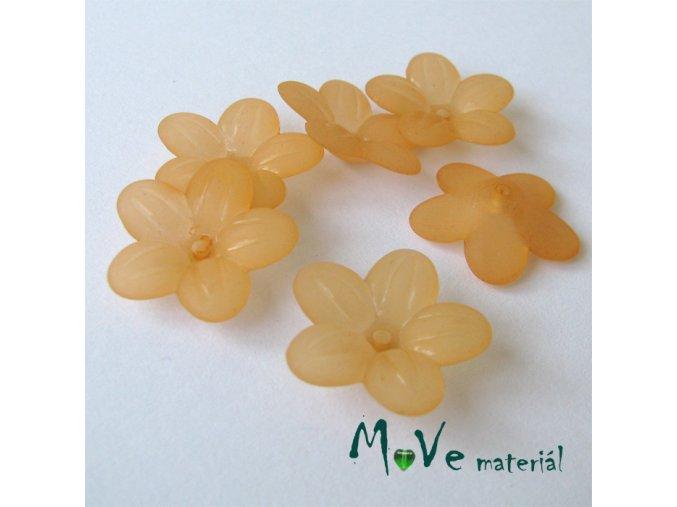 Akrylový transparentní květ 20mm, 6ks, oranžový