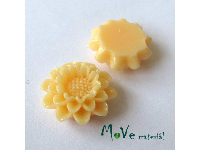 Kabošon lesklý květ B4 - resin - 2ks, meruňkový