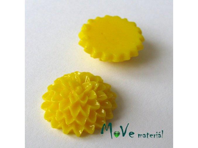 Kabošon B6 astra - resin - 2ks, žlutý