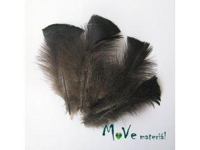 Krocaní peří ocasní délka 14-16cm,4ks přírodní