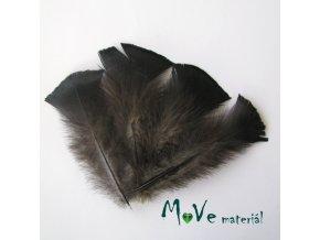 Krocaní peří ocasní délka 13-15cm,4ks přírodní