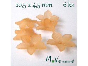 Akrylový květ - transparentní 20,5mm, 6ks, oranžový