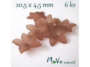 Akrylový květ - transparentní 20,5mm, 6ks, hnědý