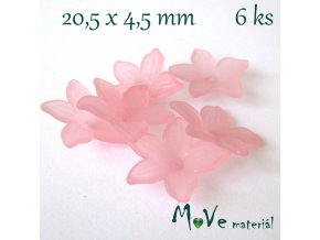 Akrylový květ - transparentní 20,5mm, 6ks, růžový