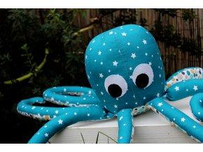 Chobotnice - Zuzanka petrolejová