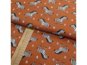 Bavlněné plátno - Zebry na rezavé - šíře 150cm/1bm