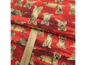 Úplet - Lvíčci na červené - šíře 150cm/1bm