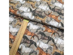 Bavlněné plátno - Koně - digi tisk - šíře 150cm/1bm