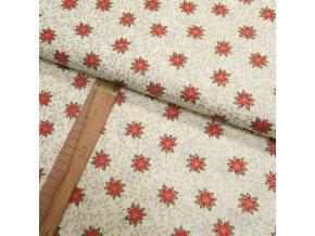 Bavlněné plátno -Vánoční hvězda červená, zlatotisk na krémové - šíře 140cm/1bm