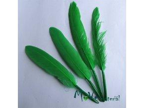 Ozdobné kachní peří délka 120-140mm, 4ks zelené