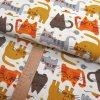 Úplet - kočky šíře 160cm/1bm